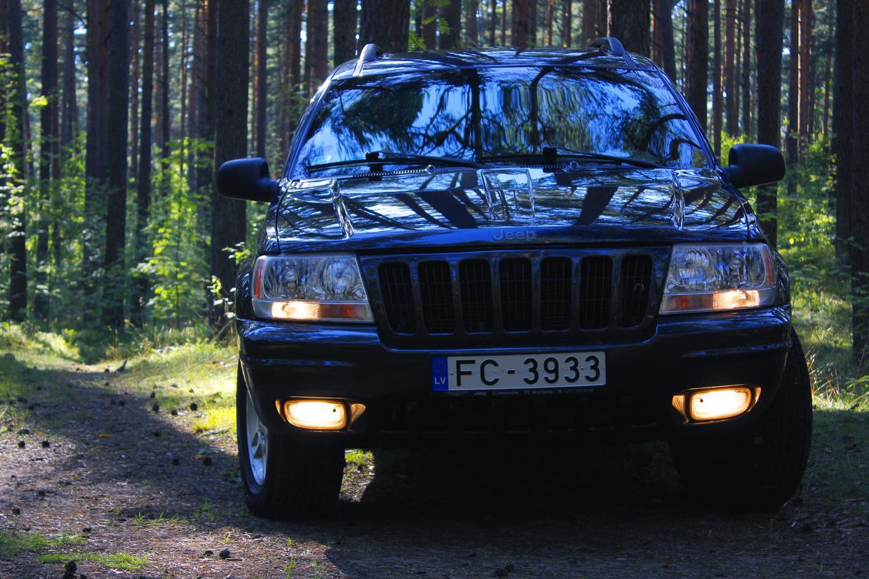 -MG-8383-ada.jpg